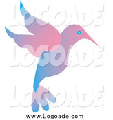 Clipart of a Gradient Blue and Pink Hummingbird Logo by Pams Clipart