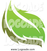 Clipart of a Green Leaf Logo by Elena