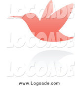 Clipart of a Pink Hummingbird Logo by Elena