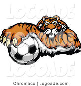 Logo of a Soccer Tiger by Chromaco