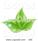 Logo of a Stock Logo of Three Green Leaves and Blue Drops of Dew Above a Space for a Company Name and Information on White by KJ Pargeter