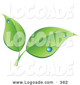 Logo of a Stock Logo of Two Green Leaves with Blue Dew Drops Above Space for a Company Name and Information on White by KJ Pargeter