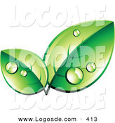 Logo of Organic Green Leaves Wet with Morning Dew, with Space for a Business Name and Company Slogan Below by Beboy