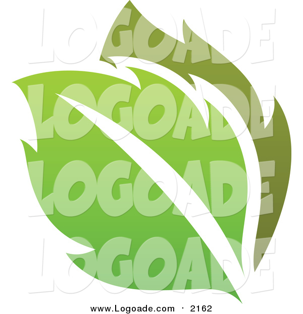 Clipart of a Green Leaf Logo