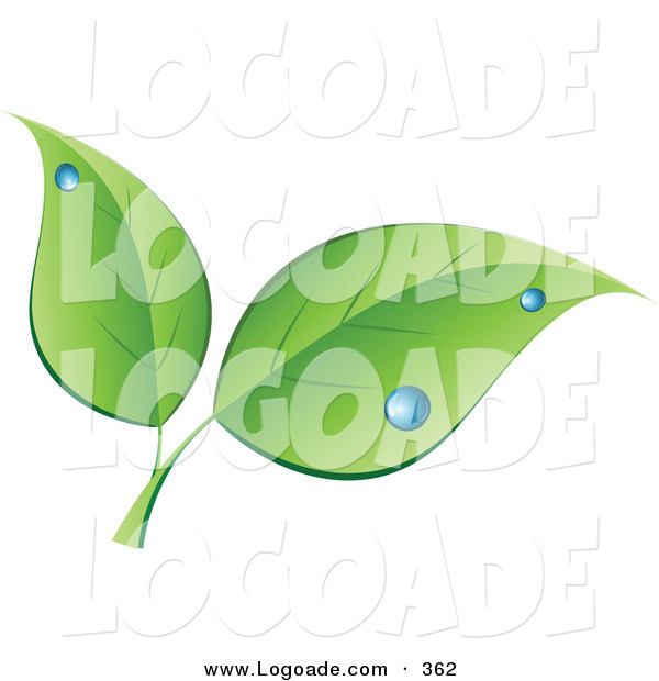 Logo of a Stock Logo of Two Green Leaves with Blue Dew Drops Above Space for a Company Name and Information on White