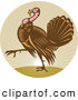 Logo of a Walking Turkey and Sunshine Logo by Patrimonio